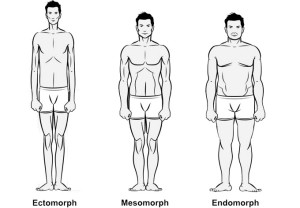 body types male